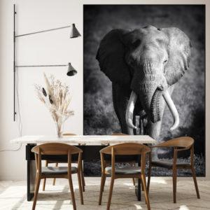 olifant aan je muur