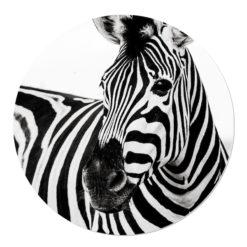 Muurcirkel Zebra
