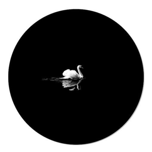 Muurcirkel Zwaan