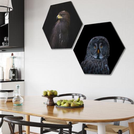 Hexagon Vogels