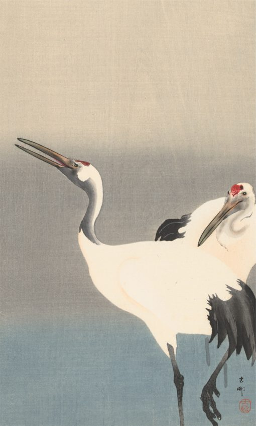 Wandkleed vogels oude meester
