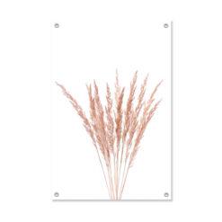 Tuinposter Plumes Pink