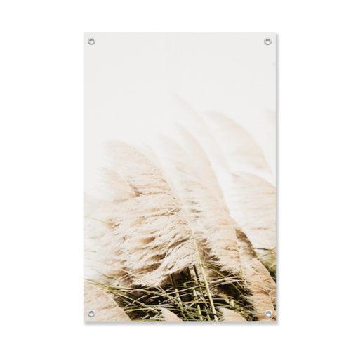 Tuinposter Witte Gras Pluimen