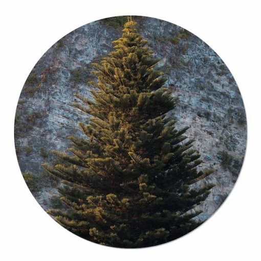 muurcirkel kerstboom