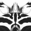 Zebra tekening